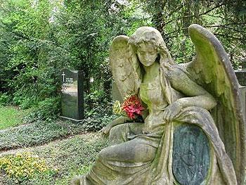 Engel der Tr�ume