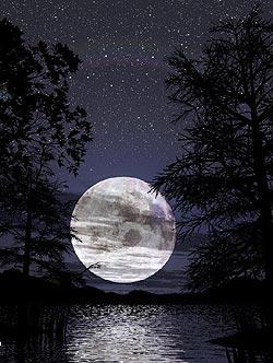 Die Nacht des Clochards